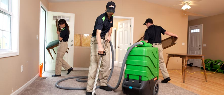 Bronx, NY cleaning services